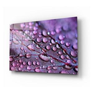 Skleněný obraz Insigne Rain Drops
