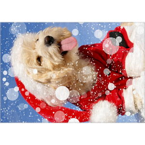 Koberec Vitaus Christmas Period Cute Dog, 50 x 80 cm