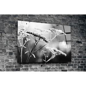 Skleněný obraz Insigne Hanuco, 72x46cm