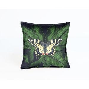 Dekorativní povlak na polštář Velvet Atelier Butterfly, 45 x 45 cm